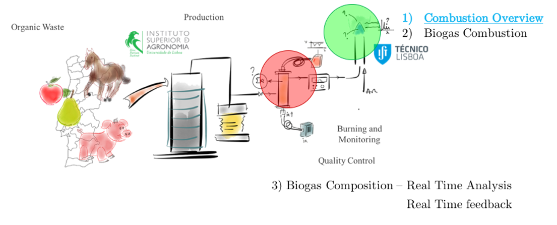Biogas Diagnosis and Monitoring